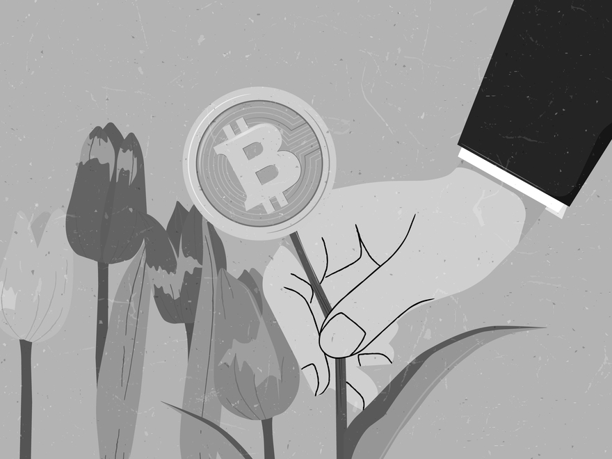 Pump-and-dump: manipulation of cryptocurrency markets
